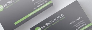 THE MUSIC WORLD